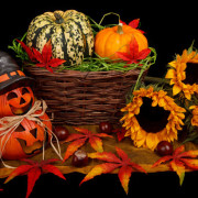 halloween-decoration-in-fall-871287575948rvtw